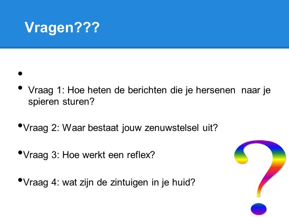 Vragen??? Vraag 1: Hoe heten de berichten die je hersenen naar je spieren sturen? Vraag 2: Waar bestaat jouw zenuwstelsel uit? Vraag 3: Hoe werkt een