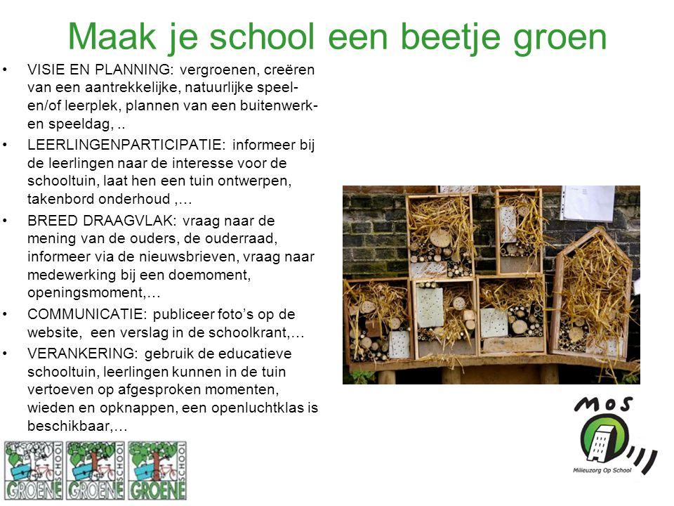 Maak je school een beetje groen VISIE EN PLANNING: vergroenen, creëren van een aantrekkelijke, natuurlijke speel- en/of leerplek, plannen van een buitenwerk- en speeldag,..