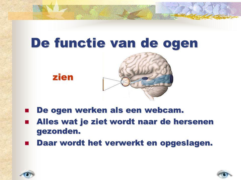 De functie van de ogen De ogen werken als een webcam.