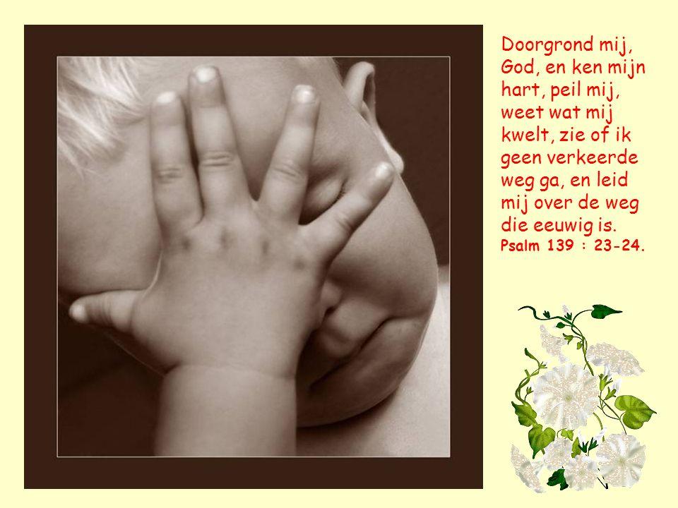 van de Here is dit geschied, en het is wonderlijk in onze ogen. Math.12 : 11.