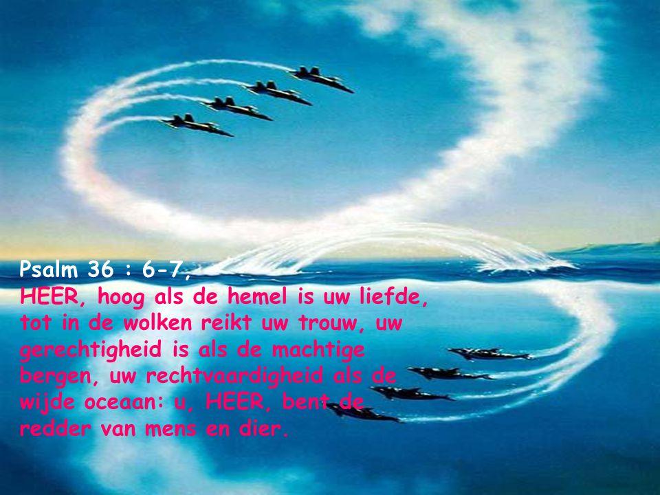 Psalm 16 : 8, Ik stel mij de HERE bestendig voor ogen; omdat Hij aan mijn rechterhand staat, wankel ik niet.