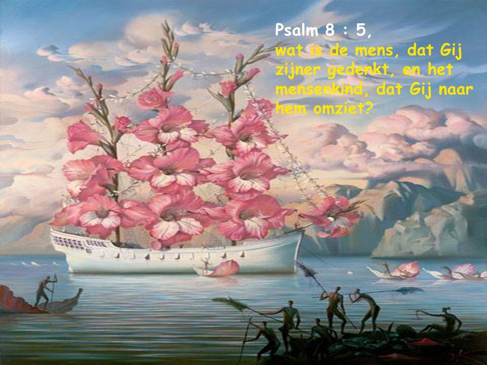 Psalm 76 : 7, Voor uw dreigen, o God van Jakob, verzonken zo wagens als paarden in diepe slaap.