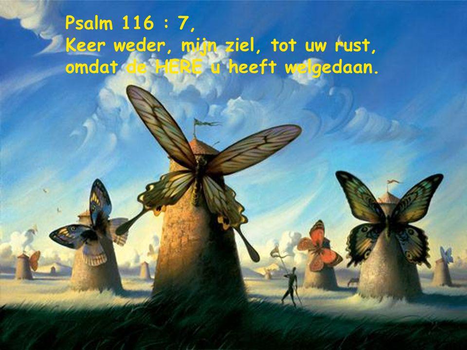 Psalm 8 : 5, wat is de mens, dat Gij zijner gedenkt, en het mensenkind, dat Gij naar hem omziet?