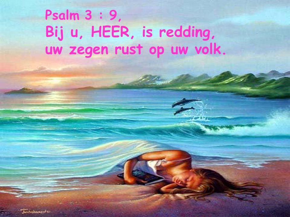 Spreuken 3 : 3-4, Dat liefde en trouw u niet verlaten! Bind ze om uw hals, schrijf ze op de tafel van uw hart, dan zult gij genegenheid en goedkeuring