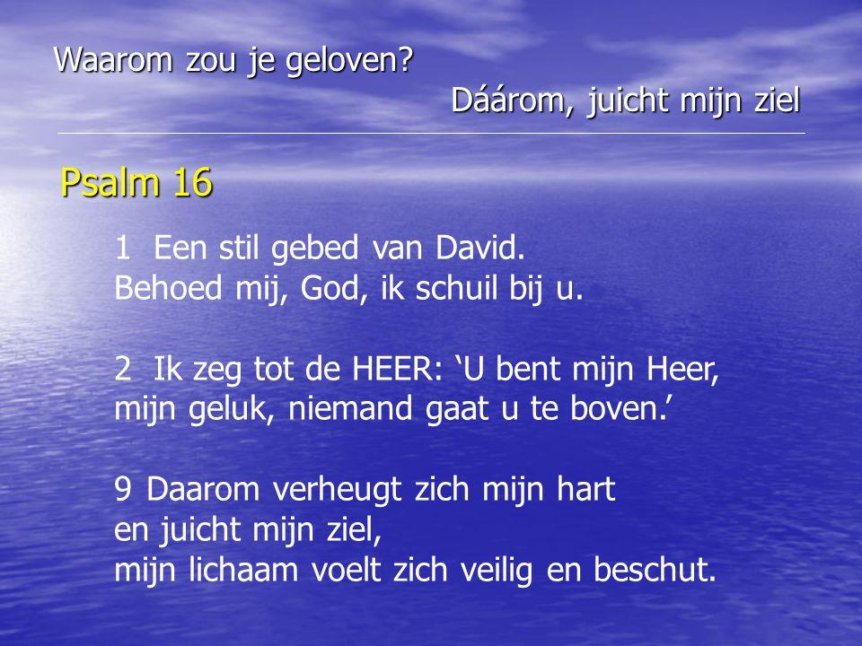 Psalm 16 1 Een stil gebed van David. Behoed mij, God, ik schuil bij u. 2 Ik zeg tot de HEER: 'U bent mijn Heer, mijn geluk, niemand gaat u te boven.'