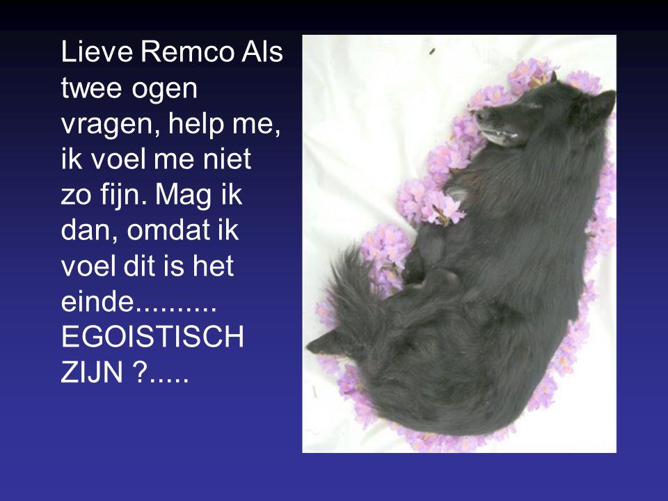 Remco Op 15-11-2007 liet ik mijn trouwe kameraad inslapen op de operatietafel. Uitgezaaide prostaatkanker. Acht jaren was hij bij me. Meer dan zes maa