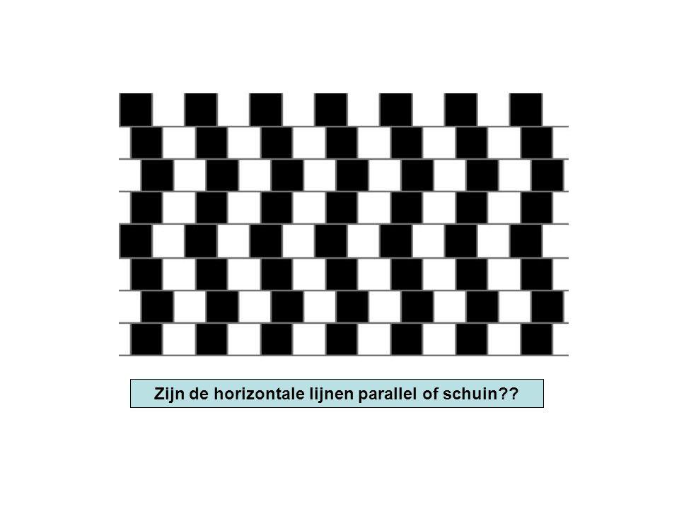 Zijn de horizontale lijnen parallel of schuin??