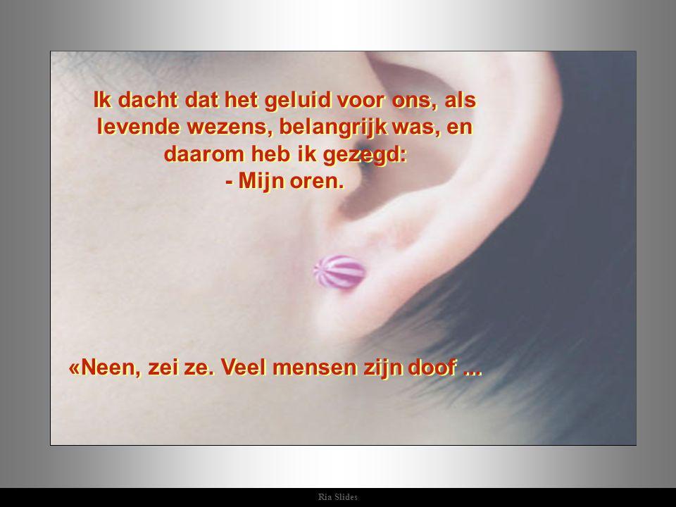 Ria Slides Ik dacht dat het geluid voor ons, als levende wezens, belangrijk was, en daarom heb ik gezegd: - Mijn oren.