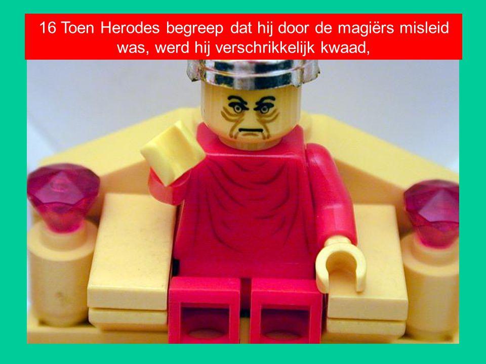 16 Toen Herodes begreep dat hij door de magiërs misleid was, werd hij verschrikkelijk kwaad,