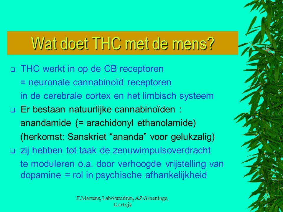 F.Martens, Laboratorium, AZ Groeninge, Kortrijk Wat doet THC met de mens?  THC werkt in op de CB receptoren = neuronale cannabinoïd receptoren in de