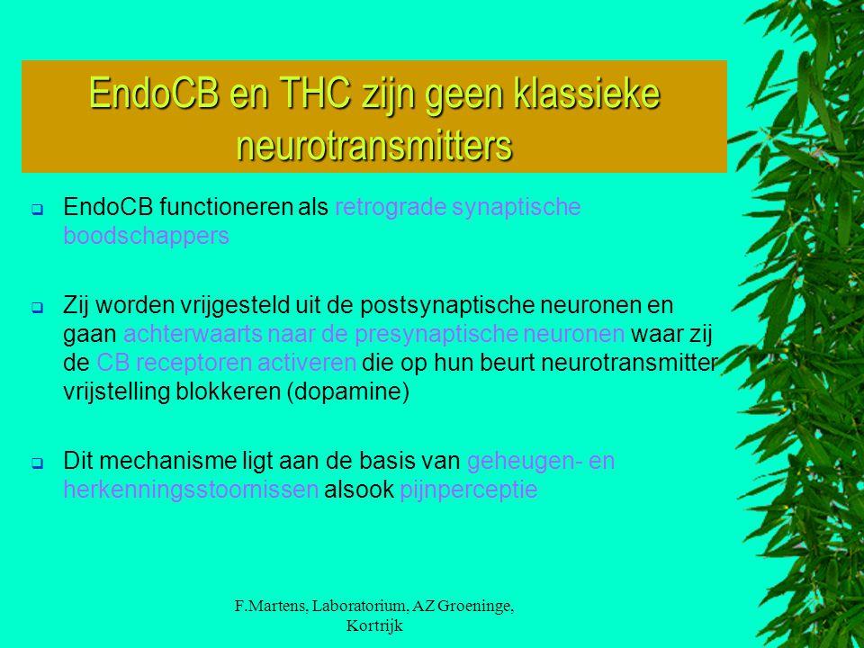 F.Martens, Laboratorium, AZ Groeninge, Kortrijk  EndoCB functioneren als retrograde synaptische boodschappers  Zij worden vrijgesteld uit de postsynaptische neuronen en gaan achterwaarts naar de presynaptische neuronen waar zij de CB receptoren activeren die op hun beurt neurotransmitter vrijstelling blokkeren (dopamine)  Dit mechanisme ligt aan de basis van geheugen- en herkenningsstoornissen alsook pijnperceptie EndoCB en THC zijn geen klassieke neurotransmitters