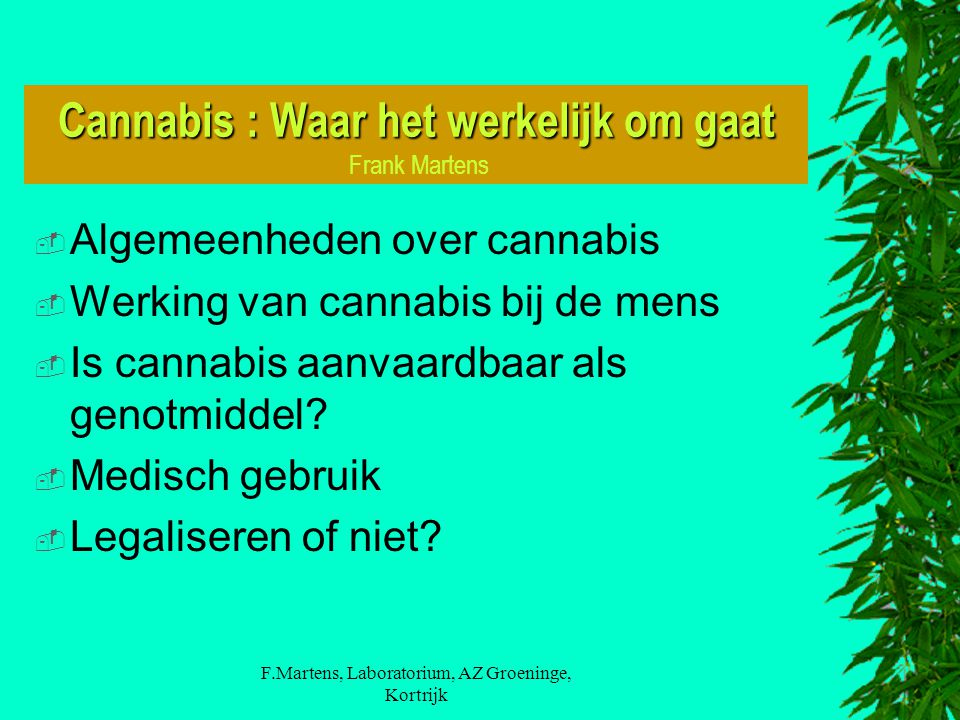 Cannabis : Waar het werkelijk om gaat Cannabis : Waar het werkelijk om gaat Frank Martens  Algemeenheden over cannabis  Werking van cannabis bij de mens  Is cannabis aanvaardbaar als genotmiddel.