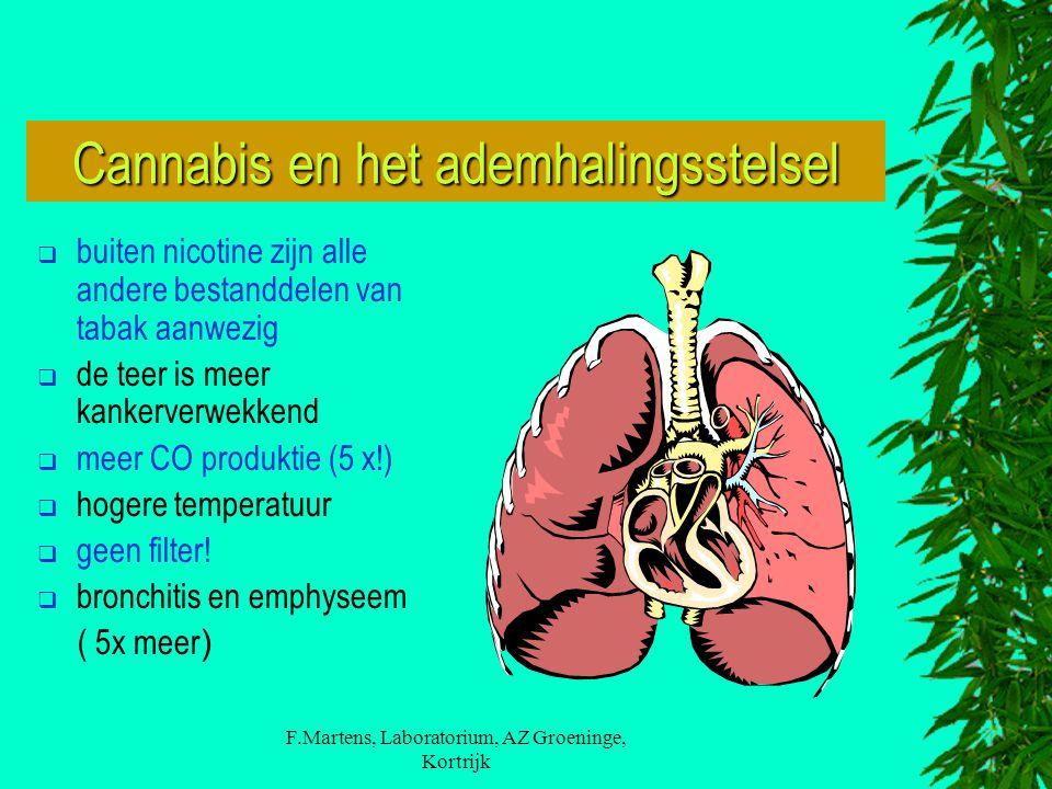 F.Martens, Laboratorium, AZ Groeninge, Kortrijk Cannabis en het ademhalingsstelsel  buiten nicotine zijn alle andere bestanddelen van tabak aanwezig  de teer is meer kankerverwekkend  meer CO produktie (5 x!)  hogere temperatuur  geen filter.