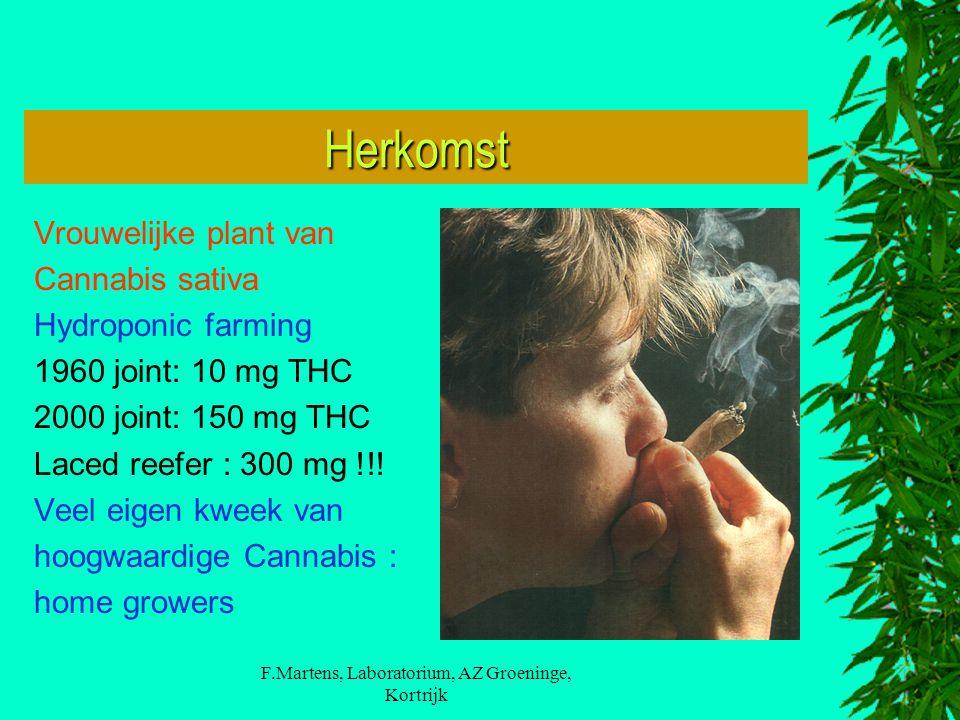 F.Martens, Laboratorium, AZ Groeninge, Kortrijk Herkomst Vrouwelijke plant van Cannabis sativa Hydroponic farming 1960 joint: 10 mg THC 2000 joint: 150 mg THC Laced reefer : 300 mg !!.