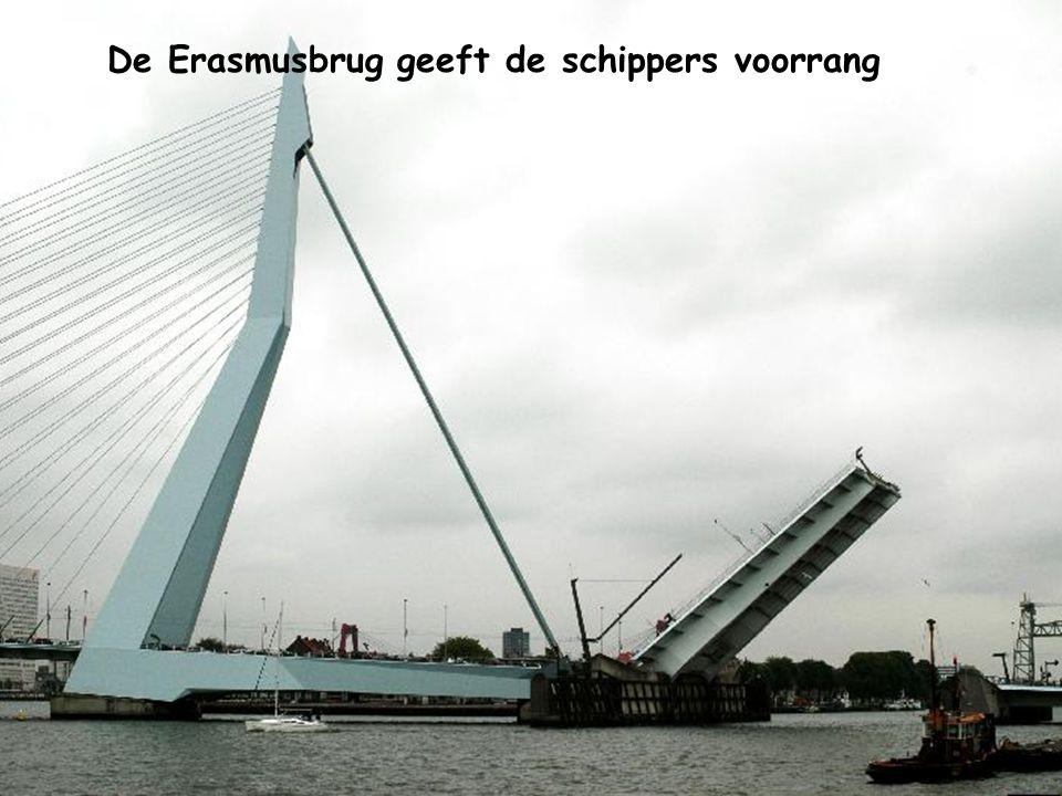 Een kijkje op de Nieuwe Willemsbrug en de Nieuwe Maas