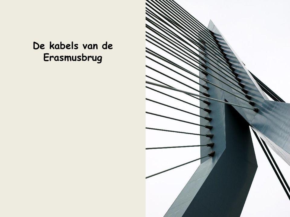 Skylijn Rotterdam (bij Maasboulevard)