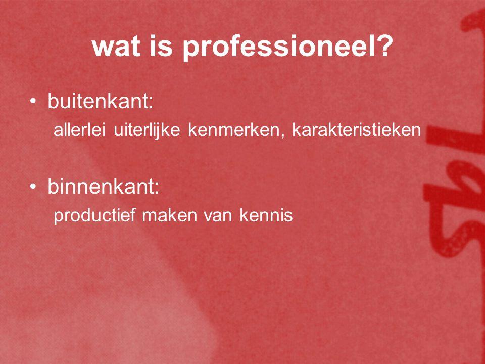wat is professioneel.