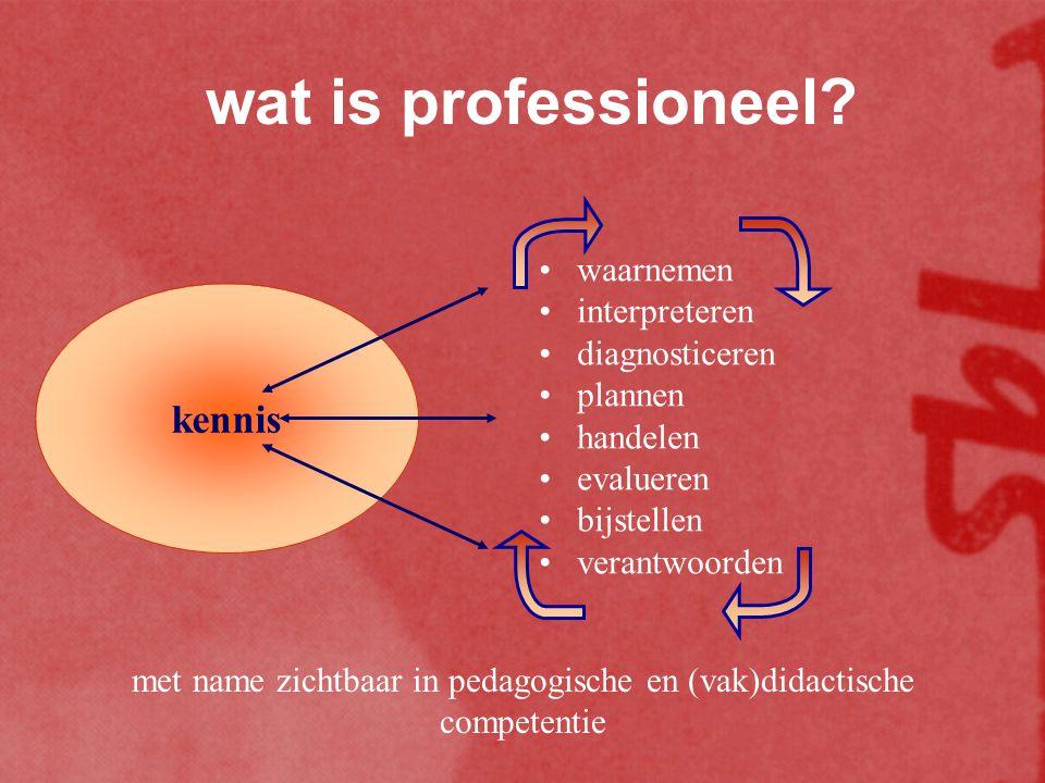 de bekwaamheidseisen de competentie zelf verwijst naar een beroepsrol (d.i.