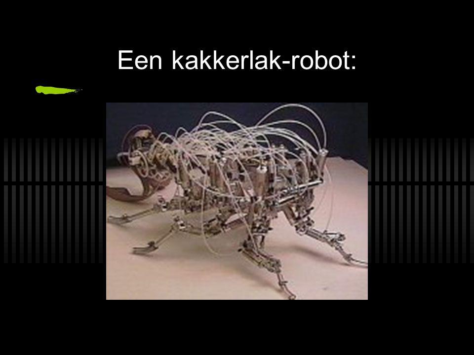 Een kakkerlak-robot: