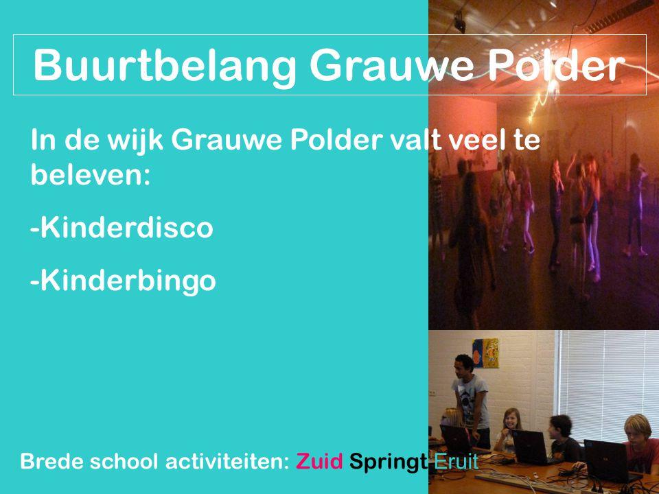 Buurtbelang Grauwe Polder In de wijk Grauwe Polder valt veel te beleven: -Kinderdisco -Kinderbingo Brede school activiteiten: Zuid Springt Eruit