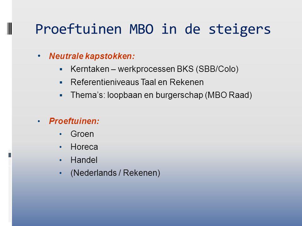 Proeftuinen MBO in de steigers Neutrale kapstokken:  Kerntaken – werkprocessen BKS (SBB/Colo)  Referentieniveaus Taal en Rekenen  Thema's: loopbaan