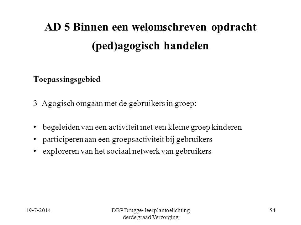 AD 5 Binnen een welomschreven opdracht (ped)agogisch handelen Toepassingsgebied 3 Agogisch omgaan met de gebruikers in groep: begeleiden van een activ