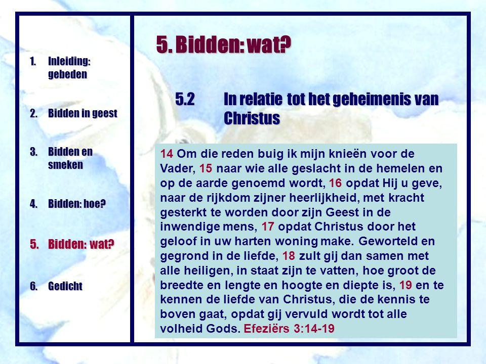 5. Bidden: wat? 1.Inleiding: gebeden 2.Bidden in geest 3. Bidden en smeken 4.Bidden: hoe? 5.Bidden: wat? 6. Gedicht 5.2In relatie tot het geheimenis v