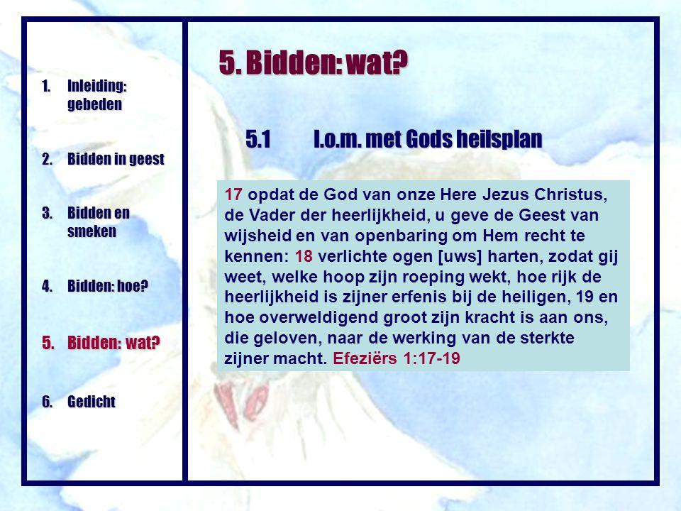 5. Bidden: wat? 5.1I.o.m. met Gods heilsplan 1.Inleiding: gebeden 2.Bidden in geest 3. Bidden en smeken 4.Bidden: hoe? 5.Bidden: wat? 6. Gedicht 17 op
