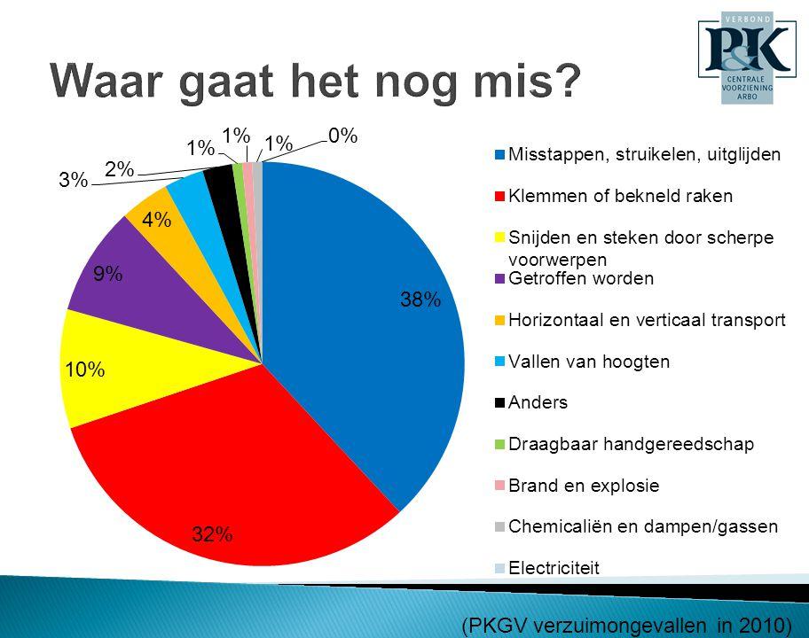 (PKGV verzuimongevallen in 2010)