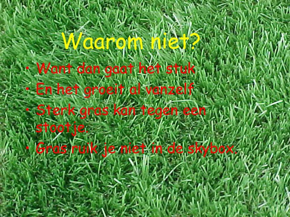 Waarom niet? Want dan gaat het stuk En het groeit al vanzelf Sterk gras kan tegen een stootje. Gras ruik je niet in de skybox.