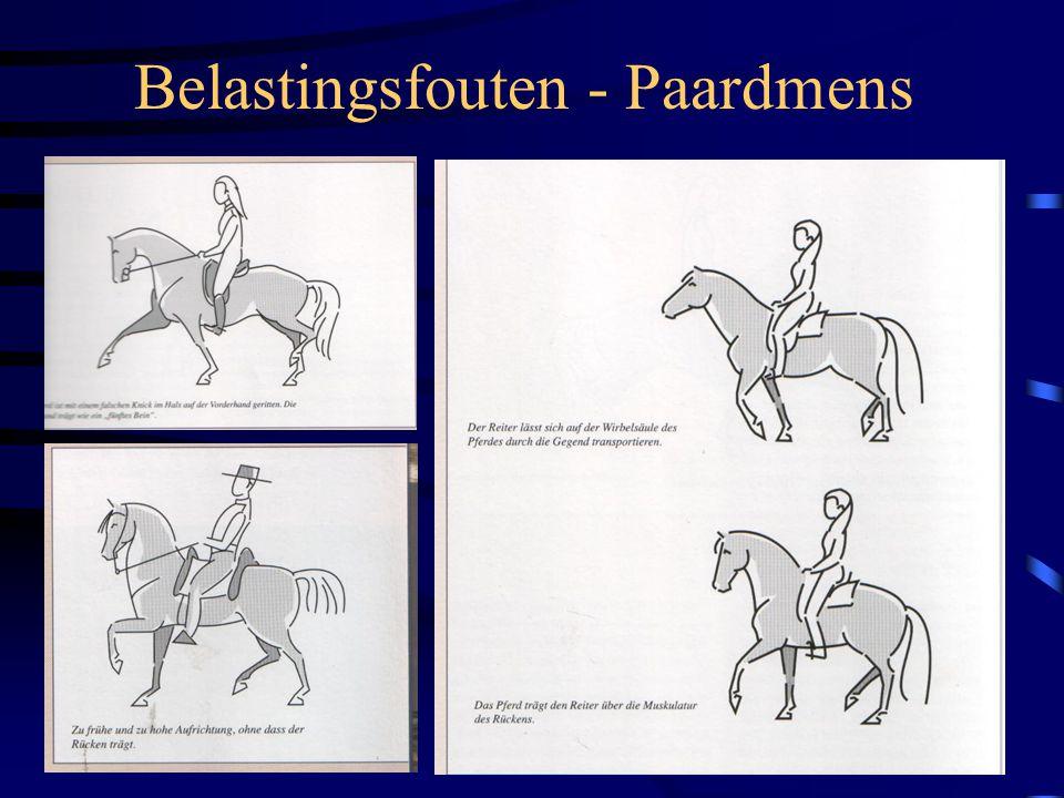 Belastingsfouten - Paardmens