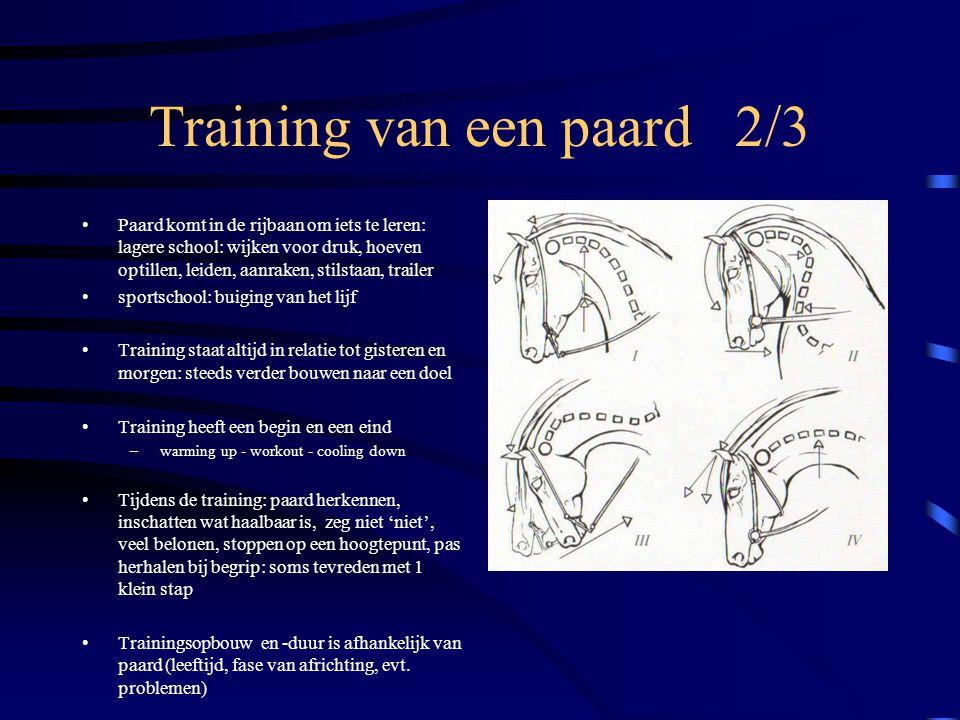 Training van een paard 3/3 Ruiter vormt zijn paard: beweging - karakter: is soms zeer fustrerend - therapeut worden: wat leer ik paard, waarom, wanneer, waarmee…..