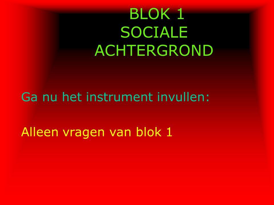 BLOK 1 SOCIALE ACHTERGROND Ga nu het instrument invullen: Alleen vragen van blok 1