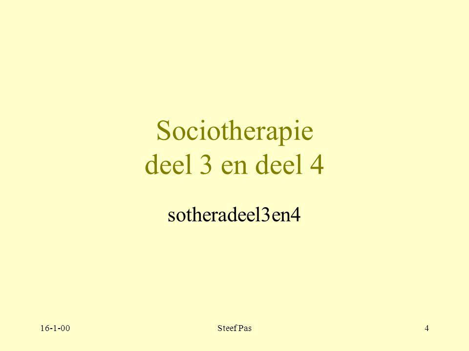 16-1-00Steef Pas3 Werken in een therapeutisch milieu C.Janzig & J.Kerstens 4e druk Team Sociotherapie