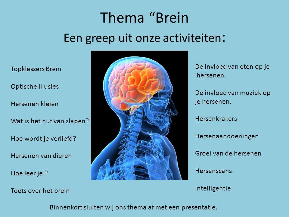 """Thema """"Brein Een greep uit onze activiteiten : Topklassers Brein Optische illusies Hersenen kleien Wat is het nut van slapen? Hoe wordt je verliefd? H"""