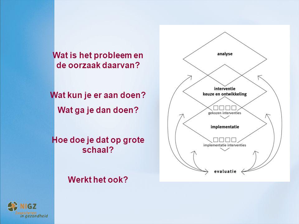 Wat is het probleem en de oorzaak daarvan? Wat kun je er aan doen? Wat ga je dan doen? Hoe doe je dat op grote schaal? Werkt het ook?