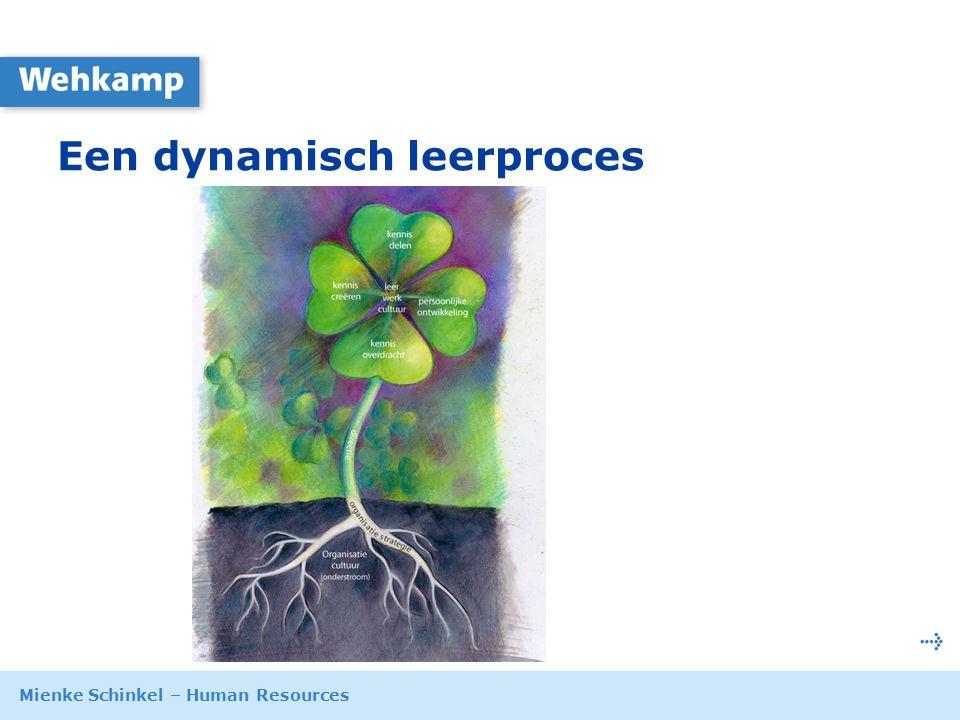 Mienke Schinkel – Human Resources 9 oktober 2007 Een dynamisch leerproces