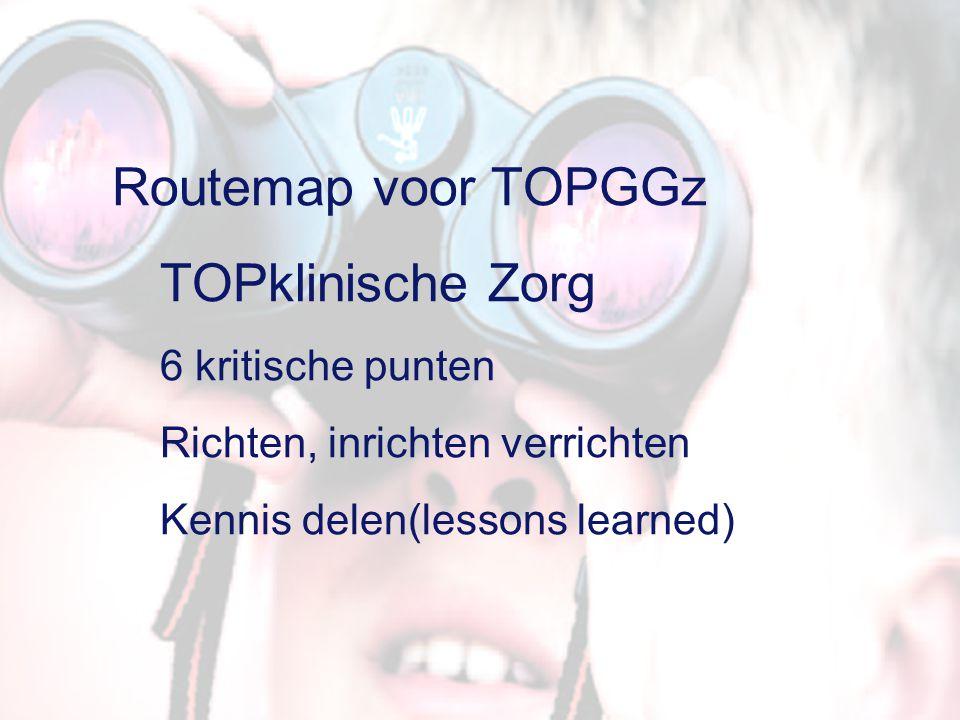 Richten  Bepaling van TOPGGz niveau  Globale verkenning van de consequenties  Bepaling TOPGGz behoefte in Nederland Inrichten  Veranderplan  Organiseren leer- en kennisprocessen  Besturen en monitoren  Middelen organiseren Verrichten  Inrichten van TOPGGz  Coaching en training  Realiseren  Exploiteren Proces TOPklinische Zorg