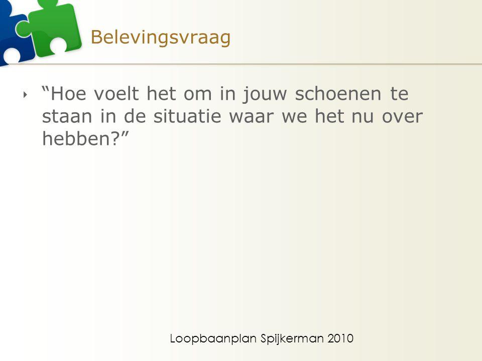 Loopbaanplan Spijkerman 2010 Belevingsvraag  Hoe voelt het om in jouw schoenen te staan in de situatie waar we het nu over hebben?