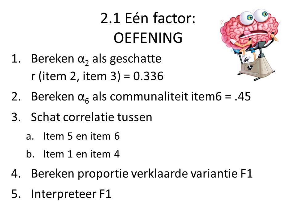 2.1 Eén factor: OEFENING 1.Bereken α 2 als geschatte r (item 2, item 3) = 0.336 2.Bereken α 6 als communaliteit item6 =.45 3.Schat correlatie tussen a