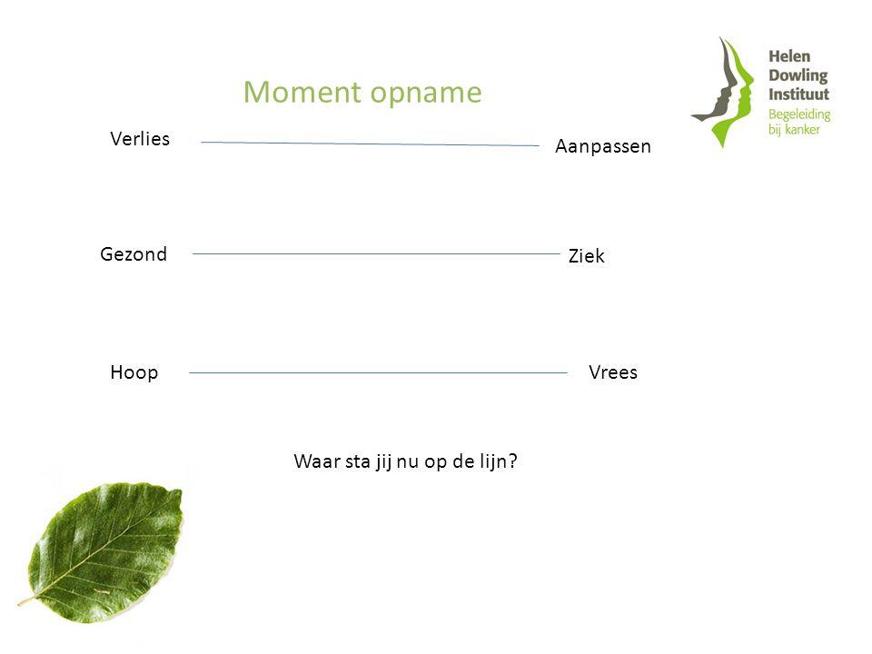 Verlies Aanpassen Gezond Ziek HoopVrees Moment opname Waar sta jij nu op de lijn?