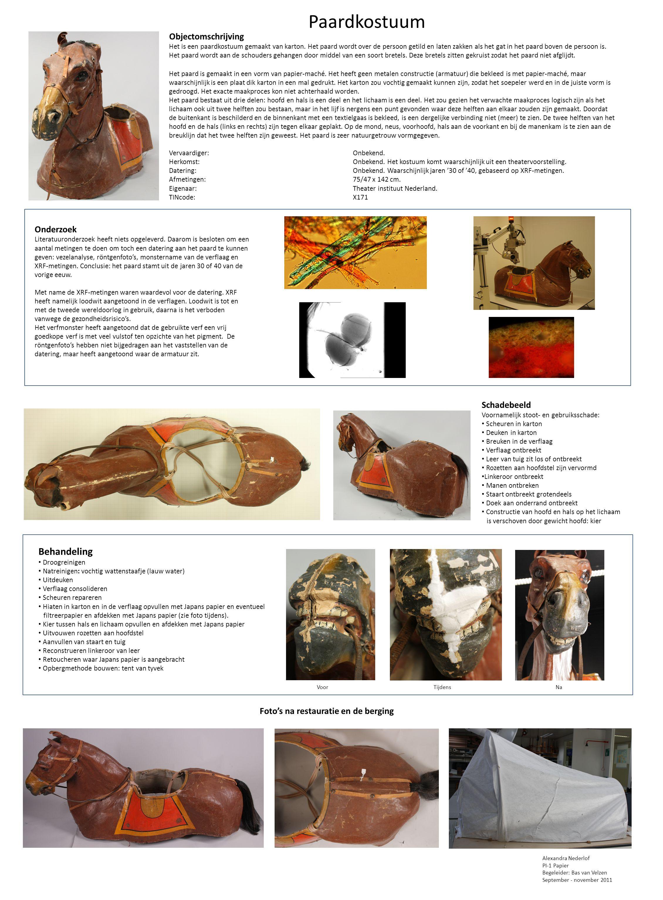 Paardkostuum Objectomschrijving Het is een paardkostuum gemaakt van karton.