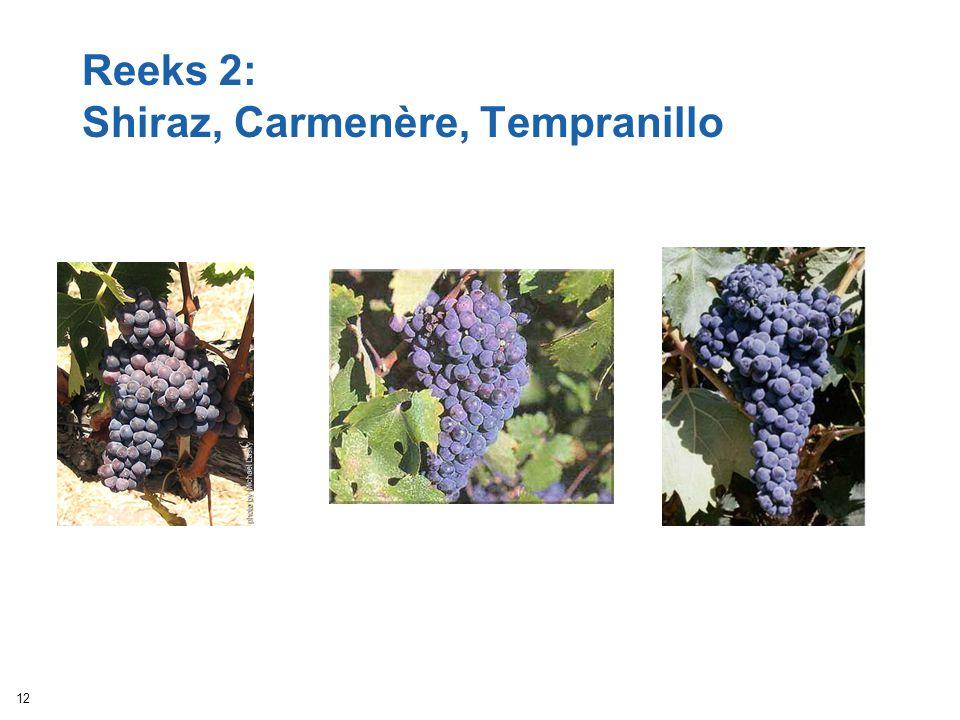 Reeks 2: Shiraz, Carmenère, Tempranillo 12