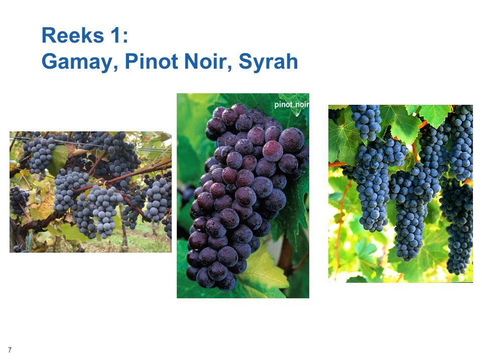 Reeks 1: Gamay, Pinot Noir, Syrah 7