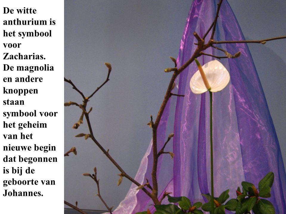 De witte anthurium is het symbool voor Zacharias. De magnolia en andere knoppen staan symbool voor het geheim van het nieuwe begin dat begonnen is bij