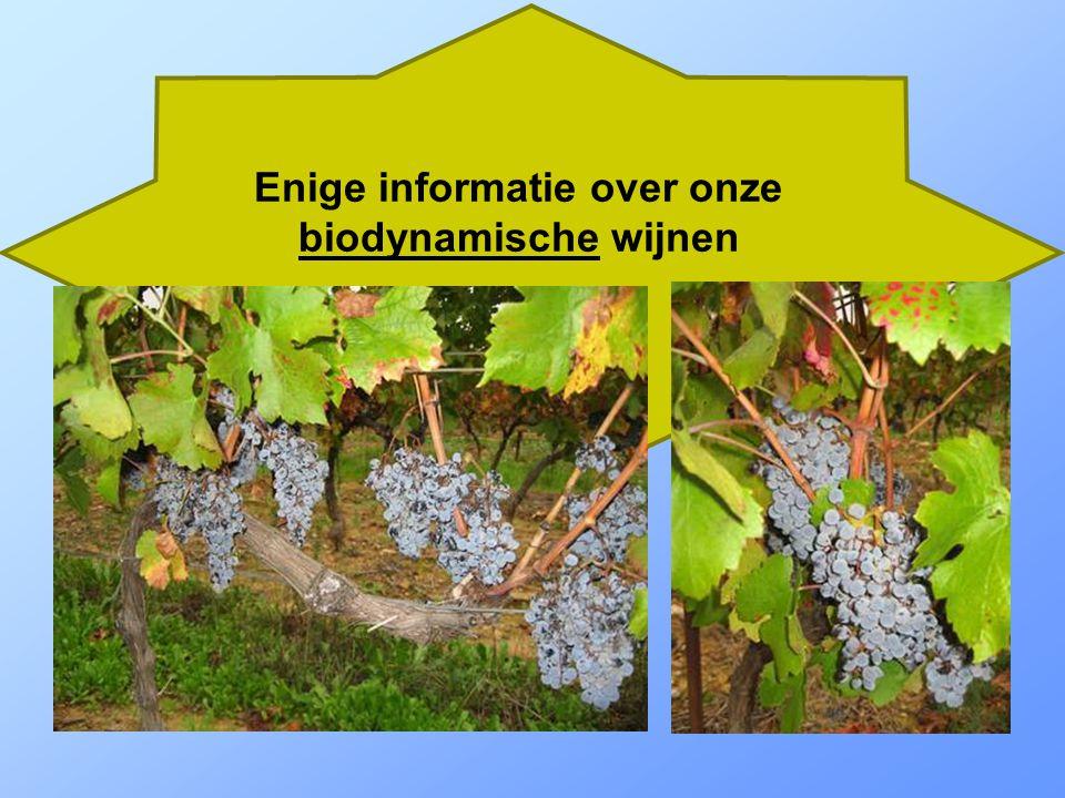 Een selectie geproefde wijnen 1 glas wijn per dag reduceert het risico op arthritis met de helft! Een regelmatige glaasje halveert het risico om reumatoïde artritis te ontwikkelen , brengt het Zweedse onderzoek naar voren.