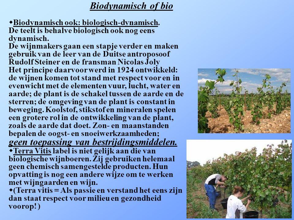 La démarche Terra Vitis garantit un mode de production de qualité respectant l environnement.