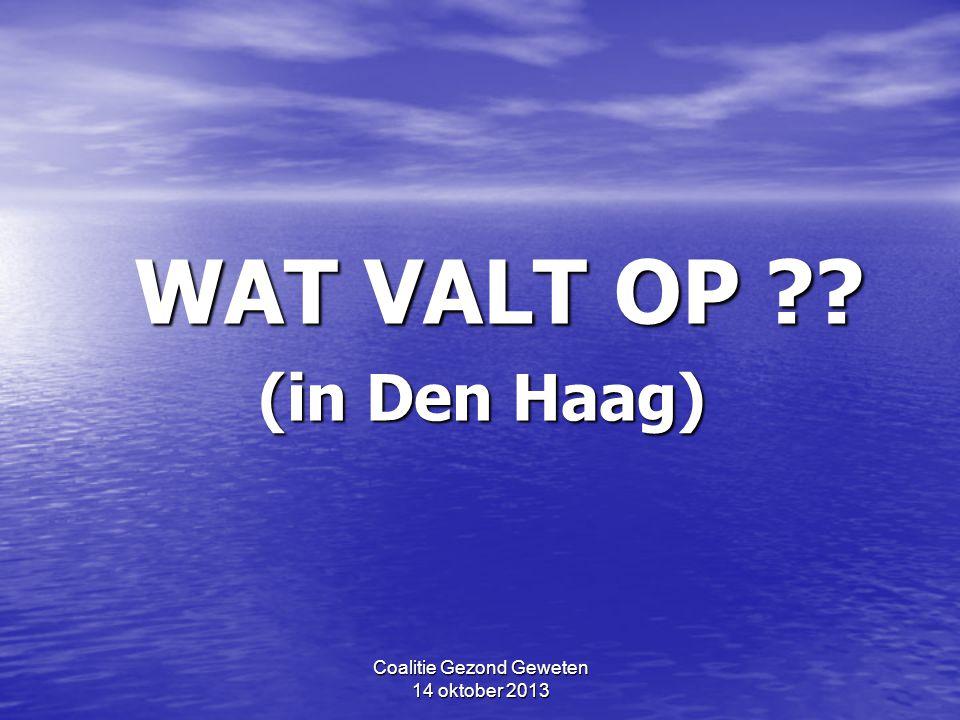 Coalitie Gezond Geweten 14 oktober 2013 Wijken in Den Haag: bodemgesteldheid NB: geel – het Zand groen – Overgang Zand-Veen groen – Overgang Zand-Veen bruin/oranje/zwart – het Veen bruin/oranje/zwart – het Veen