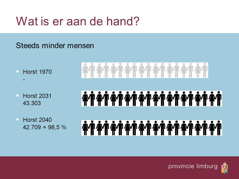 Limburg ontgroent Minder jongeren  Limburg 1970 276.000  Limburg 2005 188.000  Limburg 2040 129.000 = 69 %