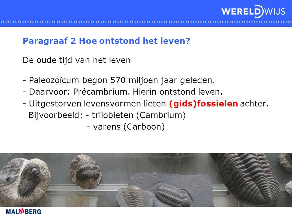 Paragraaf 2 Hoe ontstond het leven? De oude tijd van het leven - Paleozoïcum begon 570 miljoen jaar geleden. - Daarvoor: Précambrium. Hierin ontstond